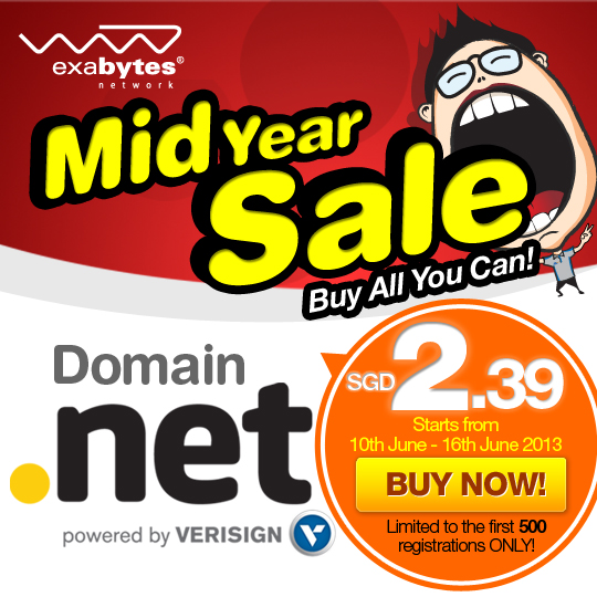 NET-Domain-Mid-Year-Sale